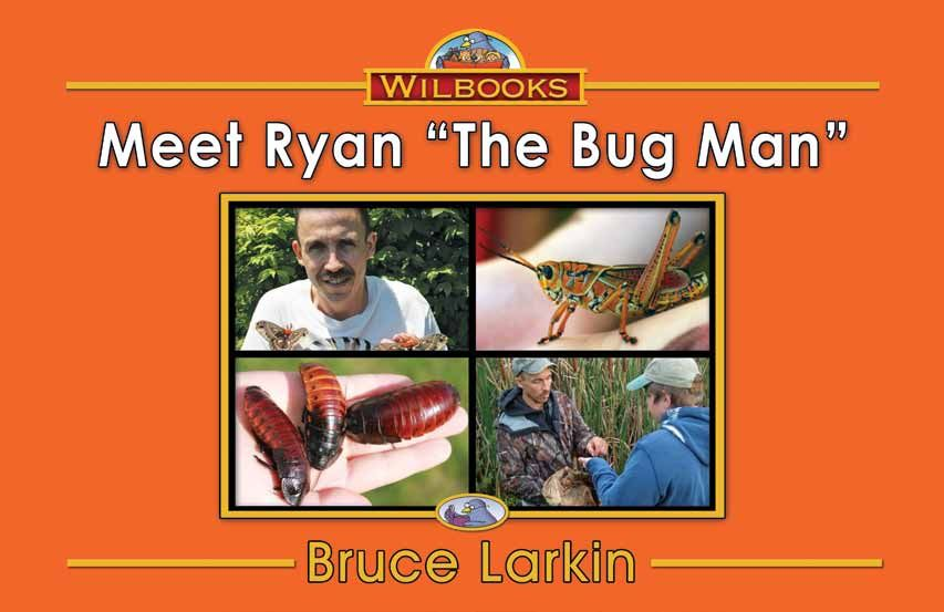 child book on insects and bugs